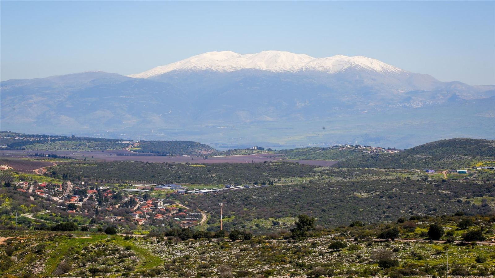 A Letter from the Golan