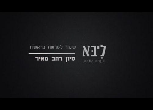 """כשאלוקים ברא את העדינות – השיעור השבועי – פרשת בראשית תשע""""ז"""