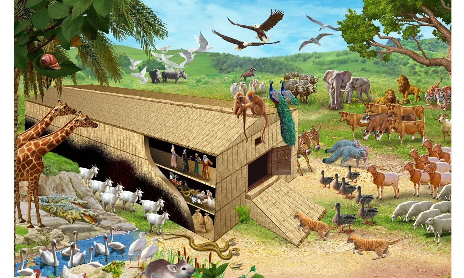 What's your Noah's ark?