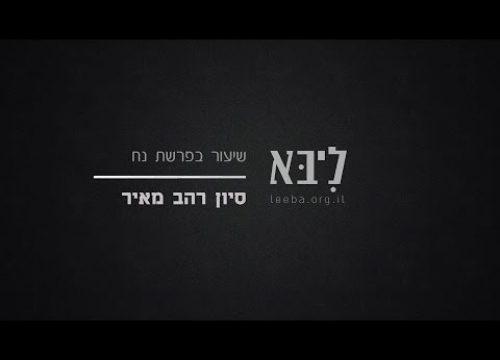 """בוא אל התיבה – השיעור השבועי – פרשת נח תשע""""ז"""