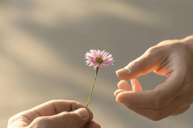 לתת ולהתחבר