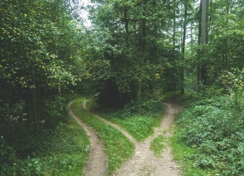 מפת הדרכים