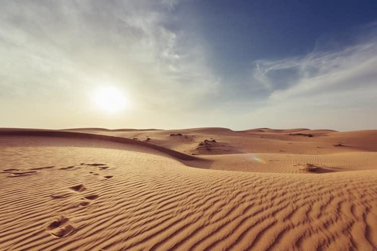 למה דווקא במדבר?