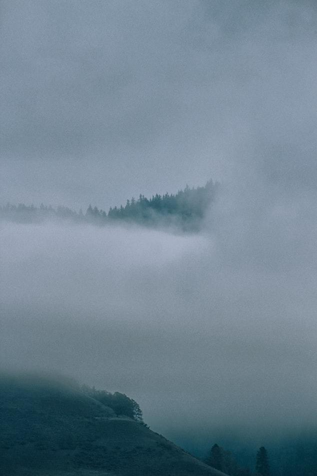 קללות בערפל