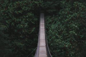 מאז וגם היום רוצה לבנות גשרים