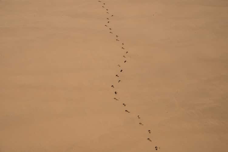 עקבות בחול